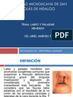 LABIO Y PALADAR HENDIDO 2.pptx