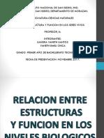 Estructura y Funcion en Los Seres Vivos.