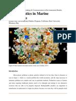 finalpaper killian may micro-plastics
