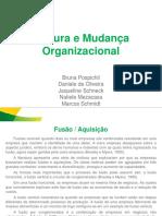 Apresentacao Cultura Organizacional