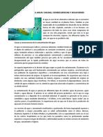 CONTAMINACIÓN DEL AGUA.pdf