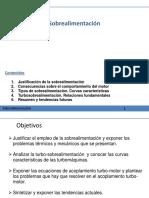 Generalidades-Sobrealimentación