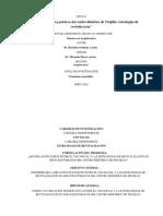 Ejemplo Cuadro de Operacionalizacion de Variables y Modelo de Cuestionario