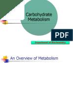 Biokimia Karbohidrat, Metabolisme Energi, dan Ketegenesis.pptx