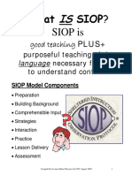 4 Overview of SIOP Model Thrower