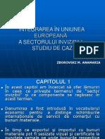 Integrarea În Uniunea Europeană a Sectorului Invizibil
