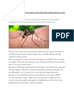 genetically modified mosquito  3 files merged