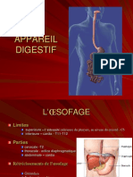 Tract Digestiv 1