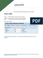 BOM_LSMW.pdf