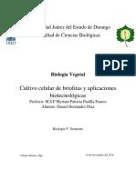 Monografía briofitas