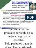 procesamientto y almacenamientto de productos agropecuarios.ppt