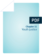 chapter-11-youth-justice