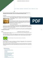 Independência do Brasil - História do Brasil - 7 de setembro, resumo.pdf