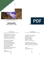 Padrinho Sebastiao - Oracao - Folha Usada.pdf