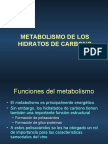 Metabolismo Carbono