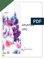 APUNTES patología cervical
