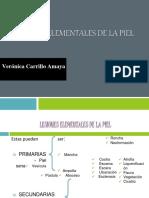 Lesioneselementalesdelapiel 150618025215 Lva1 App6891