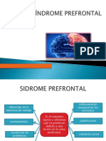 Síndrome Prefrontal