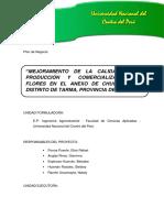 335025342-Flores-Tarma.docx