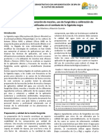 Hoja Divulgativa Nb0 3-2011 -Mezclas Fungicidas