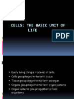 cells - basic unit of life