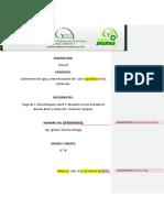 316888095-CaloriMetro.docx