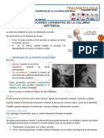 17.Malformaciones Congenitas de La Columna Vertebral 01-04-16.1g