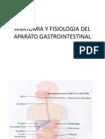 anatomia_y_fisiologia_del_aparato_gastrointestinal.pptx