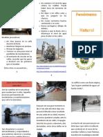 Chavez_Ruiz_Miguel_M3S3_explicando_el_fenómeno_natural.docx