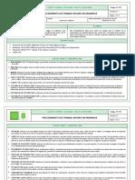 PETS DE ARMADO DE ANDAMIOS.pdf