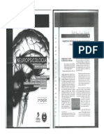 Neuropsicologia Teoria e Prática