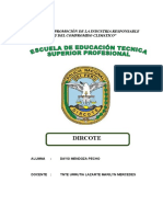229928949 Monografia Pnp Dircote Doc