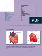 cirugia revascularizacion miocardica
