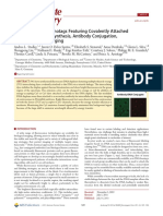 Fluoresscent DNA Nanotags