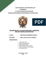 Percepcion de La Calidad Sanitaria y Ambiental Del Rio Niño Yucaes