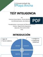 Test Inteligencia Magister