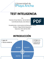Test Inteligencia Magister