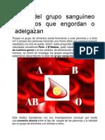 Dieta Del Grupo Sanguíneo Alimentos Que Engordan o Adelgazan