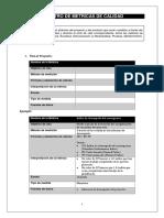 Formato Registro Métricas Calidad