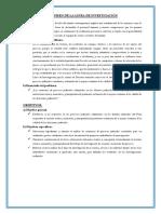 RESUMEN DE LA LINEA DE INVESTIGACIÓN.odt