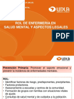 5. Rol de Enfermer a en Salud Mental
