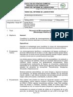 Informe 3 Microorganismos Lipolíticos FINAL