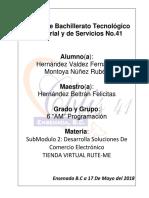 Practica-Integradora-Comercio.docx
