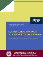 libro derechos humanos.pdf