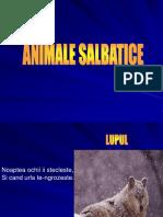 1 Animales Al Bat Ice