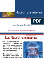 Clase 4. Neurotransmisores