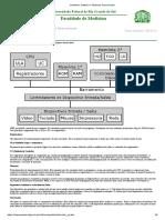 XHardware, Software e Sistemas Operacionais