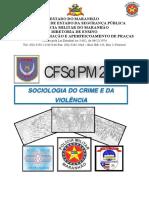 Módulo de Sociologia do Crime e da Violência CFSd