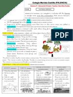 RESUMEN TEMA 6.pdf