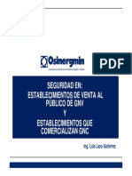 Seguridad en Establecimientos de-GNV-KFG